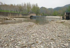Kahramanmaraş'ta Dere Yatağı Ölü Balıklarla Doldu
