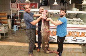 Kahramanmaraş'ta Dev Balık Avı