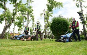 Park ve Bahçelerde Yaz Telaşı