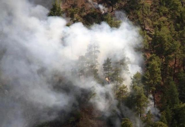 Muğla'nın iki ilçesinde ormanlık alanlarda yangın çıktı