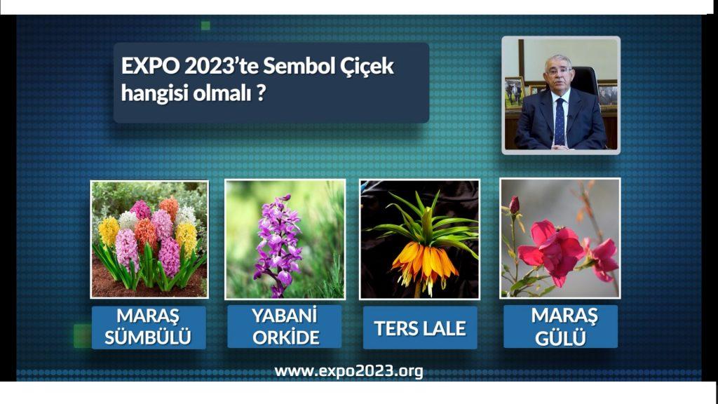 EXPO 2023 Sembol Çiçeği Oylamaya Sunuluyor!