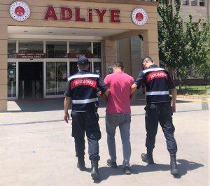 Kahramanmaraş'ta Kovan Hırsızı Tutuklandı