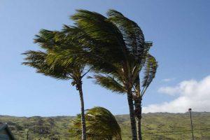 Kritik Uyarı! Kahramanmaraş'ta Kuvvetli Rüzgar ve Fırtına Bekleniyor