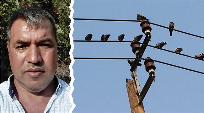 Elektrik akımına kapılan belediye personeli hayatını kaybetti