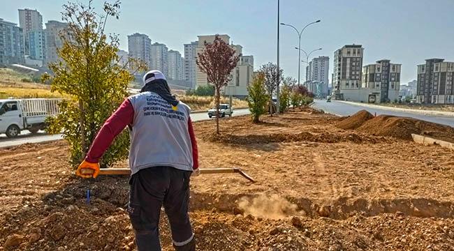 Turgut Özal Bulvarı Büyükşehir'le Güzelleşiyor