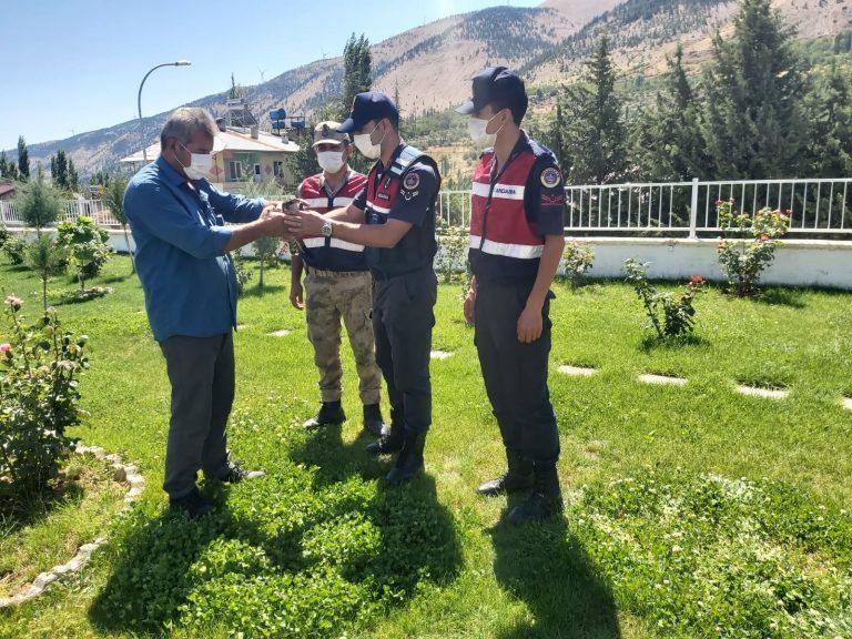 Yaralı Atmaca'ya jandarma ekipleri sahip çıktı
