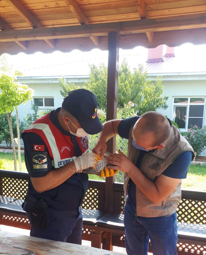 Jandarma'nın Doğa ve Hayvan Sevgisi Takdir Topladı
