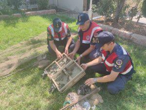 Kahramanmaraş'ta kaçak avcılara ceza yağdı